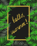 Hello, summer frame. Tropical vector background Stock Photo