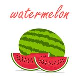 Hello summer fruit watermelon vector Stock Images