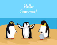 Hello Summer. Funny Emperor Penguins Family Stock Photography