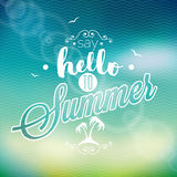 Hello Summer, i've been waiting for you inspiration quote on blur background. Vector typography design element Stock Images