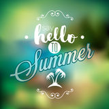 Hello Summer, i've been waiting for you inspiration quote Stock Photography