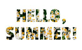 Hello Summer lettering made of daisy flowers field royalty free stock photography