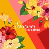 Hello Summer Poster. Floral Design with Red and Yellow Hibiscus Flowers for T-shirt, Fabric, Party, Banner, Flyer Royalty Free Stock Photos
