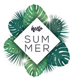 Hello summer poster. Tropic leaves with sunshine. Royalty Free Stock Photos