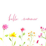 Hello summer text with hand painted watercolor Royalty Free Stock Image