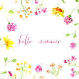 Hello summer text with hand painted watercolor Stock Photos
