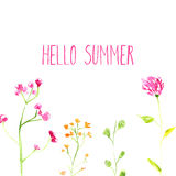 Hello summer text with hand painted watercolor Royalty Free Stock Photography