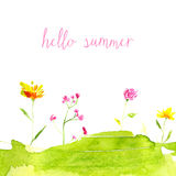 Hello summer text with hand painted watercolor Royalty Free Stock Photos