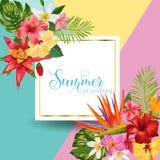 Hello Summer Tropic Design. Tropical Hibiskus Flowers Background for Poster, Sale Banner, Placard, Flyer. Floral Vintage stock illustration