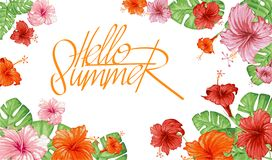 Hello summer. Tropical exotic leaves and flowers. Stock Images