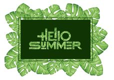 Hello summer. Tropical Palm tree leaves Royalty Free Stock Photo