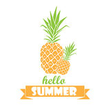 Hello summer - typography poster with hand drawn pineapples.  Stock Photo