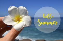 Hello Summer vacation message sign with hand holding frangipani tropical flower on a blue ocean water and sky background. Hello Summer vacation message sign royalty free stock photography