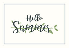 Hello Summer vector illustration with leaves on background frame. Stock Photo