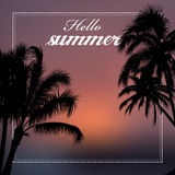Hello summer vector illustration. With palm trees Stock Image