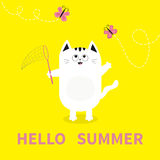 Hello summer. White cat Pink butterfly insect, net. Dash line track.. Cute cartoon character. Greeting card. Funny pet animal coll Stock Image
