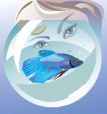 Hello, vissen! stock illustratie