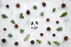 Hello winter hand lettering with mittens icon. Winter pattern with pinecones and spruce branch on grey background top Royalty Free Stock Images