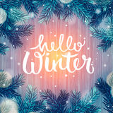 Hello Winter, holiday background, Christmas. Fir tree and snowflakes, vector illustration Stock Image