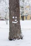 Hello winter!. Snow smile on tree. Strange snowman Royalty Free Stock Photo