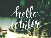 Hello winter typography overlay on blurred photo. Hello winter typography overlay on photo of Christmas trees. Lettering banner for greeting cards and social stock image