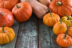 Helloween, Harvest Festival, Thanksgiving. Bright orange pumpkin. S on robin egg blue background copyspace Stock Photos