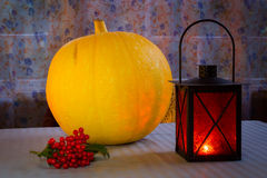Helloween orange lantern, pumpkin and red berry Royalty Free Stock Photos