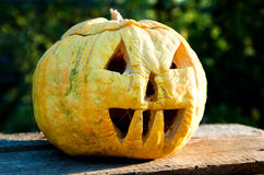 Helloween pumpkin Royalty Free Stock Images