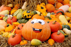 Helloween pumpkin Royalty Free Stock Photos