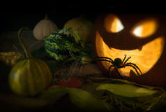 Helloween Royalty Free Stock Images