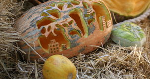 Helloween pumpkin stock footage