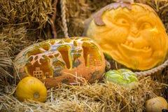 Helloween pumpkin Stock Image