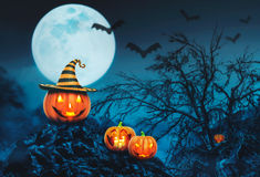 Helloween pumpkins in the forest Stock Photo