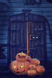 Helloween pumpor Royaltyfri Foto