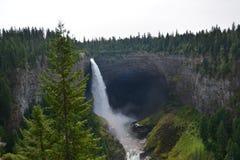 Helmckendalingen van Canada Stock Foto
