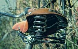 Helmet, Grass, Personal Protective Equipment, Tree stock photo