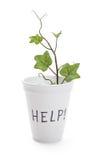 Help Stock Image