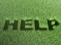 Help. Word cutted in grass, 3d render Royalty Free Stock Image