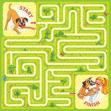 Help the character to find a way out of the maze. Help the dog to find the right way. Help pet find their owner. Maze Game with Solution. Tangled lines. Funny Stock Photos