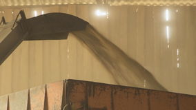With help of a conveyor grain rises up and falls out in a body for transport. stock footage
