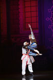 """Help jump- ballet """"One Thousand and One Nights"""" Stock Photography"""