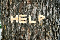 Help nature concept. Ual image with a tree and help written on its bark Royalty Free Stock Images