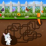 Help the rabbit to find the carrot!. Illustration of Help the rabbit to find the carrot Royalty Free Stock Photos
