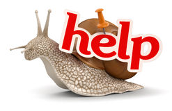 Help Snail (clipping path included) Stock Image