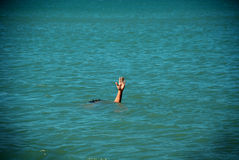 Help sos. Single hand of drowning man in sea asking for help Royalty Free Stock Photos
