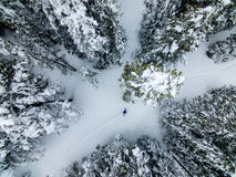 Help! Sos! Aerial Drone photo of a lost hiker in the Colorado Rocky Mountains royalty free stock image