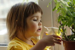 The help to mum. Kar 02. The little girl waters a flower at a window Royalty Free Stock Photos