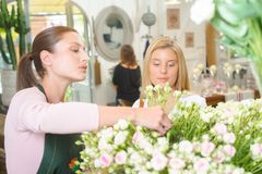 Helping customer choose right flowers Royalty Free Stock Photography