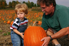 A helping hand. Family members work together to lift a pumpkin Stock Images