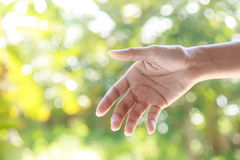 Helping hands  against nature background Stock Photography